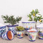 Verano-Ceramics-Group-shot-2