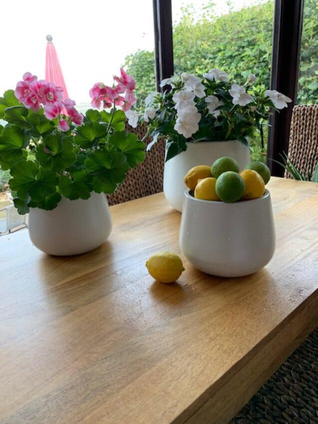 Verano-Ceramics-Indoor-Plant-Pots-Cylinder-White-Lifestyle-1