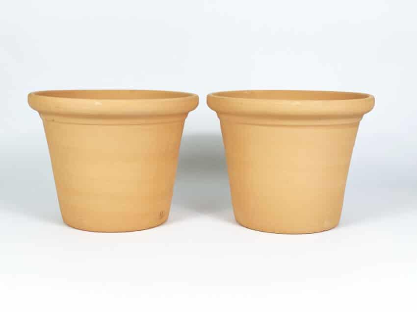 Terracotta Rimmed Planters